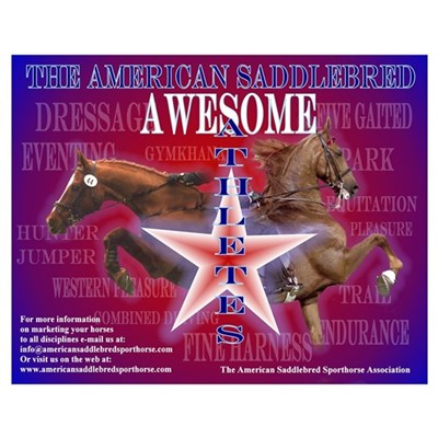 16 x 20 Awesome Athletes Poster