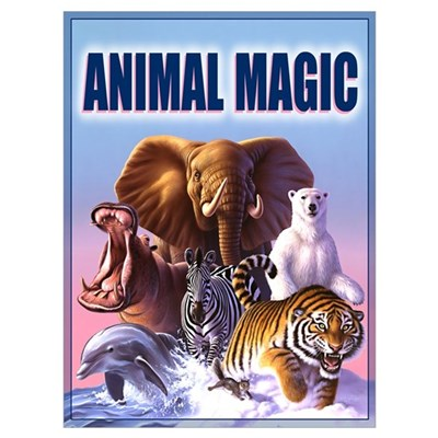 Animal Magic 2 Framed Print