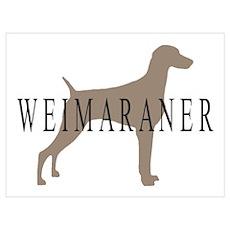 Weimaraner Greytones Poster