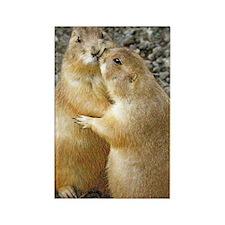 Prairie Dog Kiss Rectangle Magnet (10 Magnets