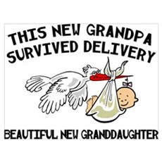 Funny New Granddaughter Poster