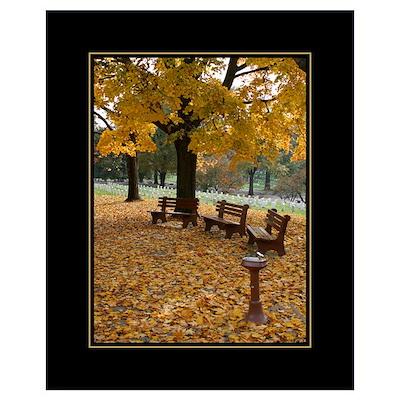 Arlington Benches 16x20 Poster