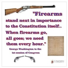 Firearms and the Constitution Framed Print