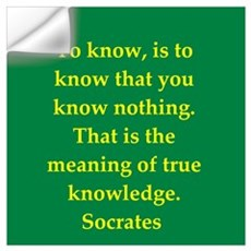 Wisdom of Socrates Wall Decal