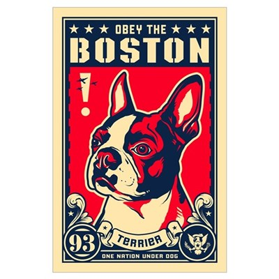 Obey the Boston! USA Poster