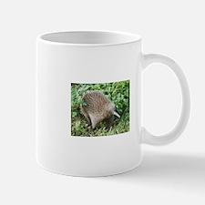 Unique Echidna Mug