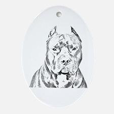 Pit Bull Head Ornament (Oval)