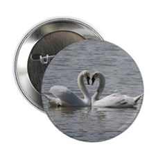 """Swans in Love 2.25"""" Button"""