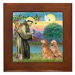St Francis - 2 Goldens Framed Tile