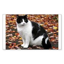 Tuxedo Kitty Decal