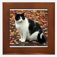 Tuxedo Kitty Framed Tile