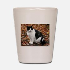 Tuxedo Kitty Shot Glass