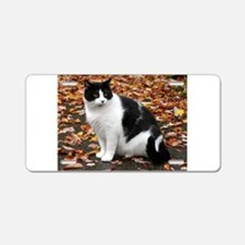 Tuxedo Kitty Aluminum License Plate