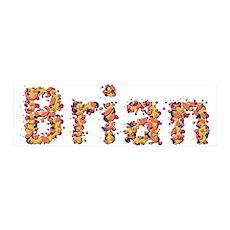 Brian Fiesta 42x14 Wall Peel