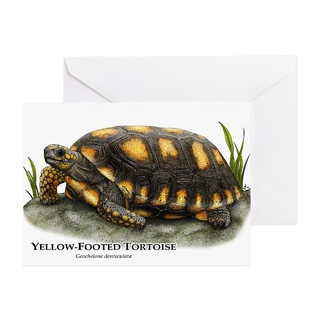 Yellow-Footed Tortoise Greeting Cards (Pk of 20)