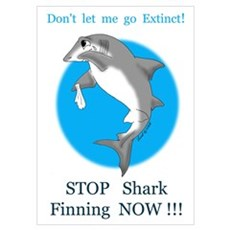 Stop Finning Poster