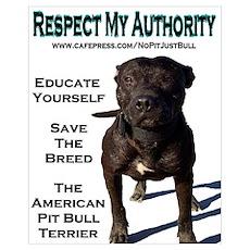 """Respect"" Poster"