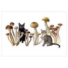 Mushroom Cats Poster