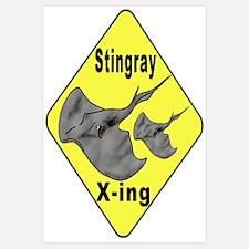 Singray Crossing