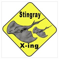 Singray Crossing Canvas Art