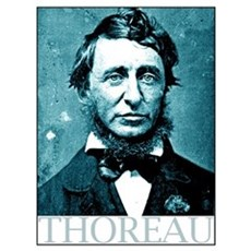Henry David Thoreau Framed Print