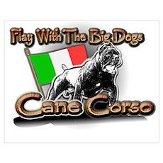 Play Cane Corso Poster