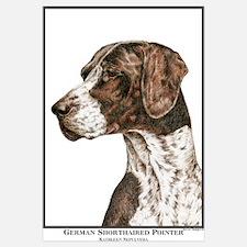 German Shorthair Pointer Head