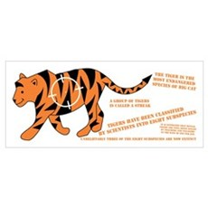 Tiger Facts Poster