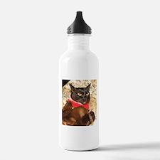 FPG Xmas Cat VIII - Sports Water Bottle