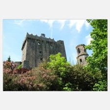 Funny Blarney castle ireland Wall Art