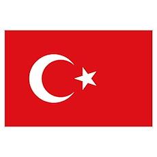 Flag Turkey Poster