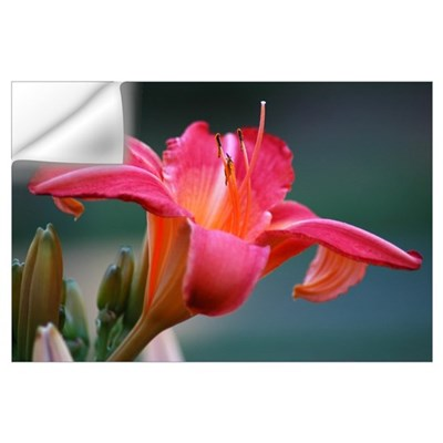 PINK LILY 0844 Wall Decal