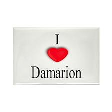 Damarion Rectangle Magnet