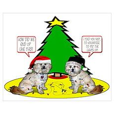 Shitzapoo Christmas Poster