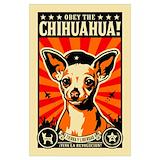 Chihuahuas Posters