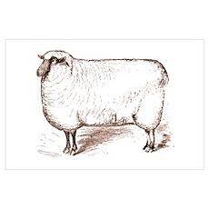 Victorian Lamb Poster