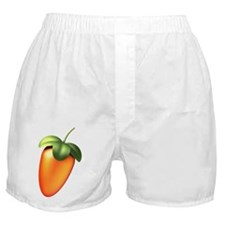 FL Logo Colored Boxer Shorts