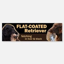 Flat-coated Retriever Bumper Bumper Bumper Sticker