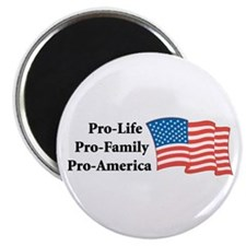 Pro-America Magnet
