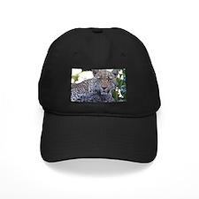 Leopard Portrait Baseball Hat