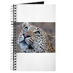Leopard Portrait Journal