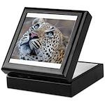 Leopard Portrait Keepsake Box