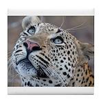 Leopard Portrait Tile Coaster