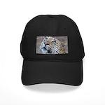 Leopard Portrait Black Cap