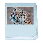 Leopard Portrait baby blanket