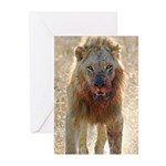 Power & Intimidation! Greeting Cards (Pk of 10)