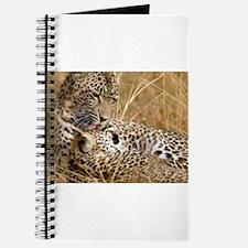 Karula and Male Cub Journal