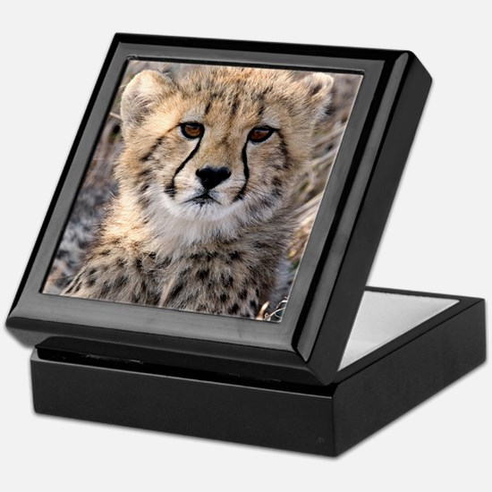 Cheetah Cub Keepsake Box