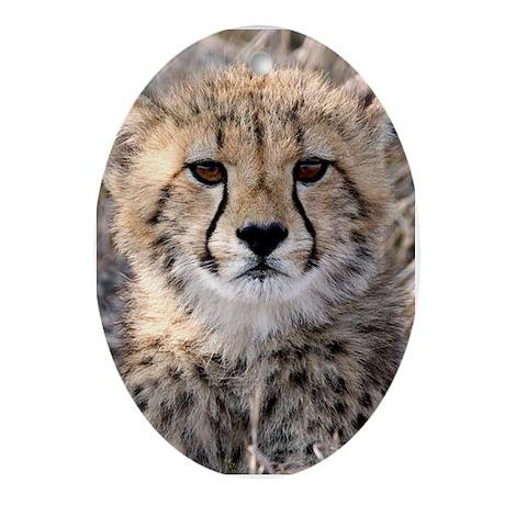 Cheetah Cub Ornament (Oval)