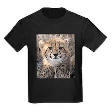 Cheetah Cub T